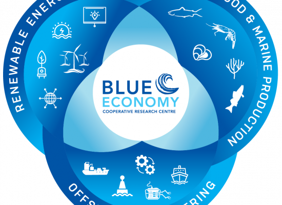 Varsity to establish Institute for Blue Economy and Ocean Studies